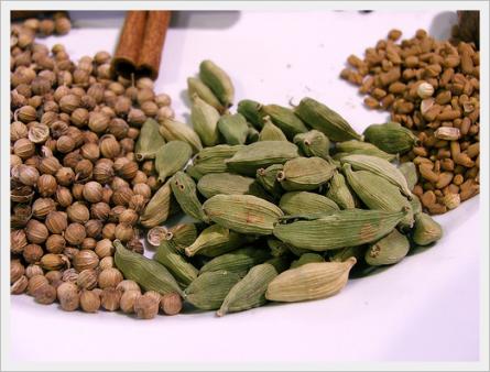 Cardamono e coriandolo, spezie per la dieta Dukan