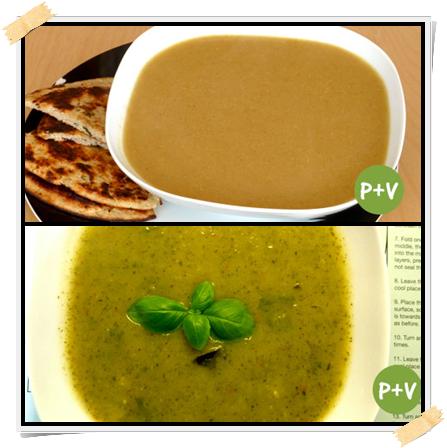 Dieta Dukan, ricette di zuppe per i giorni di proteine più verdure (PV) della fase di crociera