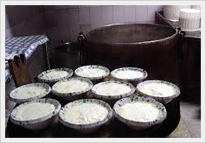 Elenco dei formaggi e latticini permessi dalla fase d'attacco della dieta Dukan