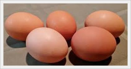 Le uova nella dieta Dukan