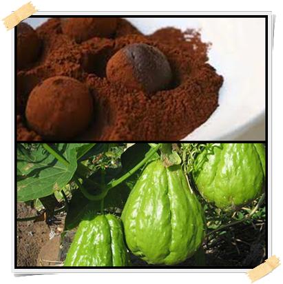 Dolci Dukan: ricetta dei tartufi di zucchine e cioccolato (fase di crociera, giorni PV)