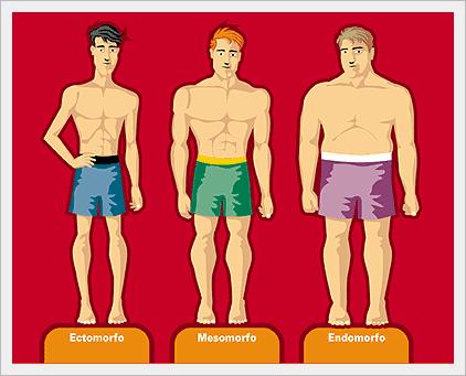Morfismi: i tre somatotipi
